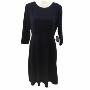 Adrianna Papell Dress Size 12
